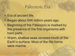 Paleozoic Points, PDI