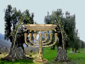 Menorah and Two Olive Trees, PDI