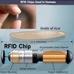FRID Chip Up Close And Personal, PDI