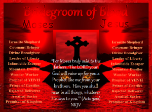 new bridegroom of blood